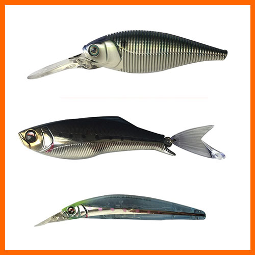 Depredador Peces Nadadores