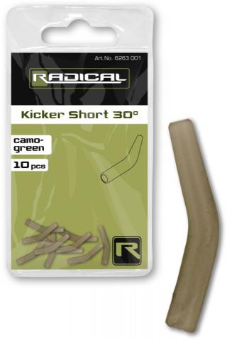Kicker Largo 30